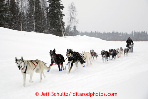 Curt Perano drives his team on the Takotna river about a mile before the checkpoint just before dawn on Wednesday March 6, 2013. Iditarod Sled Dog Race 2013 Photo by Jeff Schultz copyright 2013 DO NOT REPRODUCE WITHOUT PERMISSION