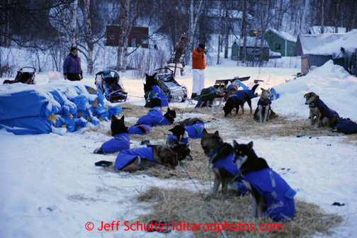 Karin Hendrickson and Linwood Fiedler work with their dogs at the Takotna checkpoint on Thursday March 7, 2013. Iditarod Sled Dog Race 2013 Photo by Jeff Schultz copyright 2013 DO NOT REPRODUCE WITHOUT PERMISSION