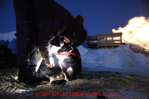 Bob Bundtzen boots his dogs at dawn as he prepares to leave the Unalakleet checkpoint on Monday March 11, 2013. Iditarod Sled Dog Race 2013 Photo by Jeff Schultz copyright 2013 DO NOT REPRODUCE WITHOUT PERMISSION