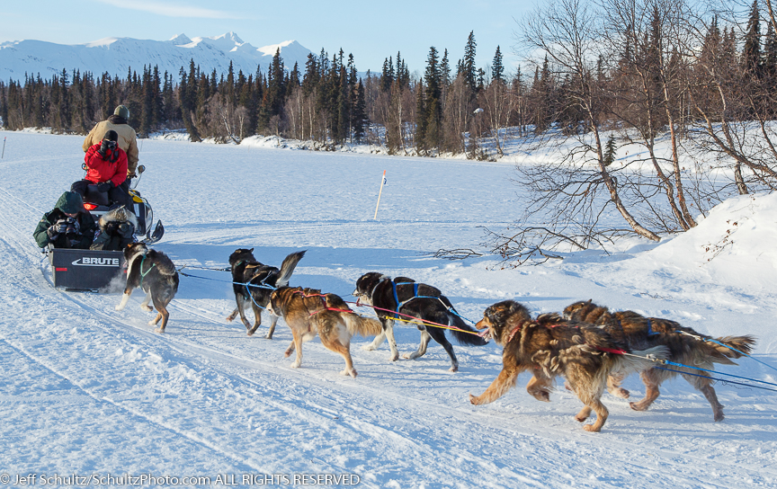 Northern Lights 300 Sled Dog Race Photo Workshop 2015