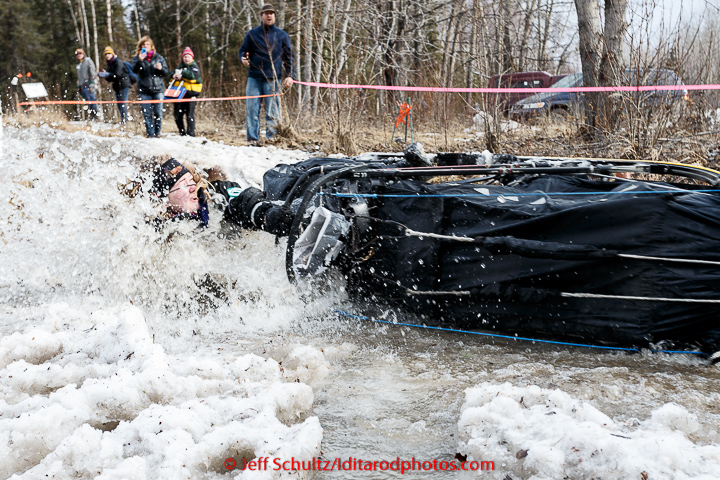Mike Santos handler takes a spill into a puddle along the bike/ski trail during the cermonial start day of Iditarod 2015 in Anchorage, Alaska. Saturday March 7, 2015 (C) Jeff Schultz/SchultzPhoto.com - ALL RIGHTS RESERVED DUPLICATION PROHIBITED WITHOUT PERMISSION