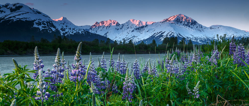 Contact Jeff Schultz to discuss your Alaska professional photography ...