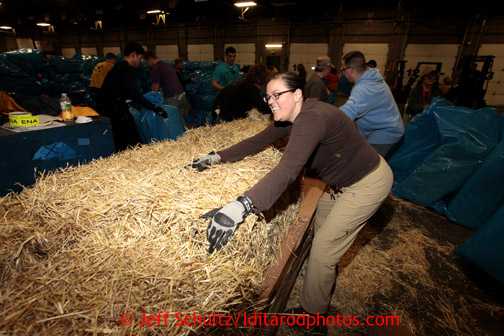 Mary Maddux pushes some of 1500 bales of straw down to other volunteers at Airland Transport in Anchorage to be sent out to the 22 checkpoints along the Iditarod trail Thursday, Feb. 7, 2013.