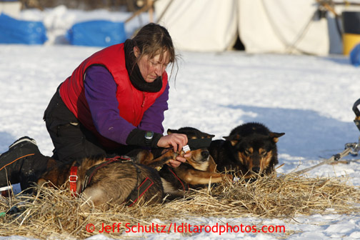 Kelley Griffin boots her dogs at the Nikolai checkpoint March 5, 2013.