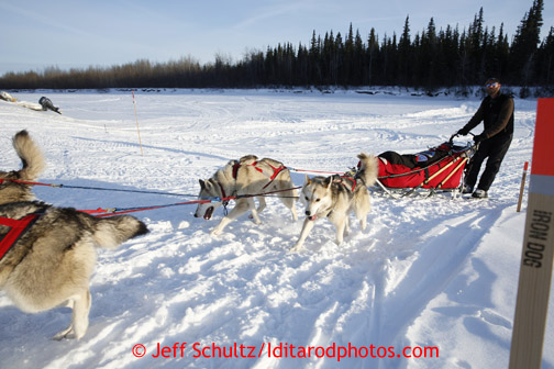 Mike Ellis rolls into the Nikolai checkpoint with his team of Siberian Huskies March 5, 2013.