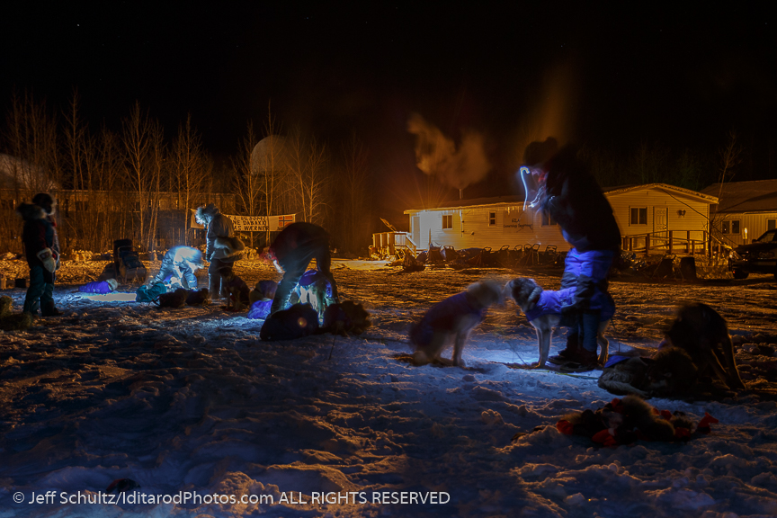 Volunteer vets examine Brian Wilmshurst 's team around 1 am at the Galena checkpoint on Friday March 13, 2015 during Iditarod 2015.   (C) Jeff Schultz/SchultzPhoto.com - ALL RIGHTS RESERVED  DUPLICATION  PROHIBITED  WITHOUT  PERMISSION