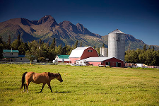 Palmer farm used on an Alaska stock photo shoot