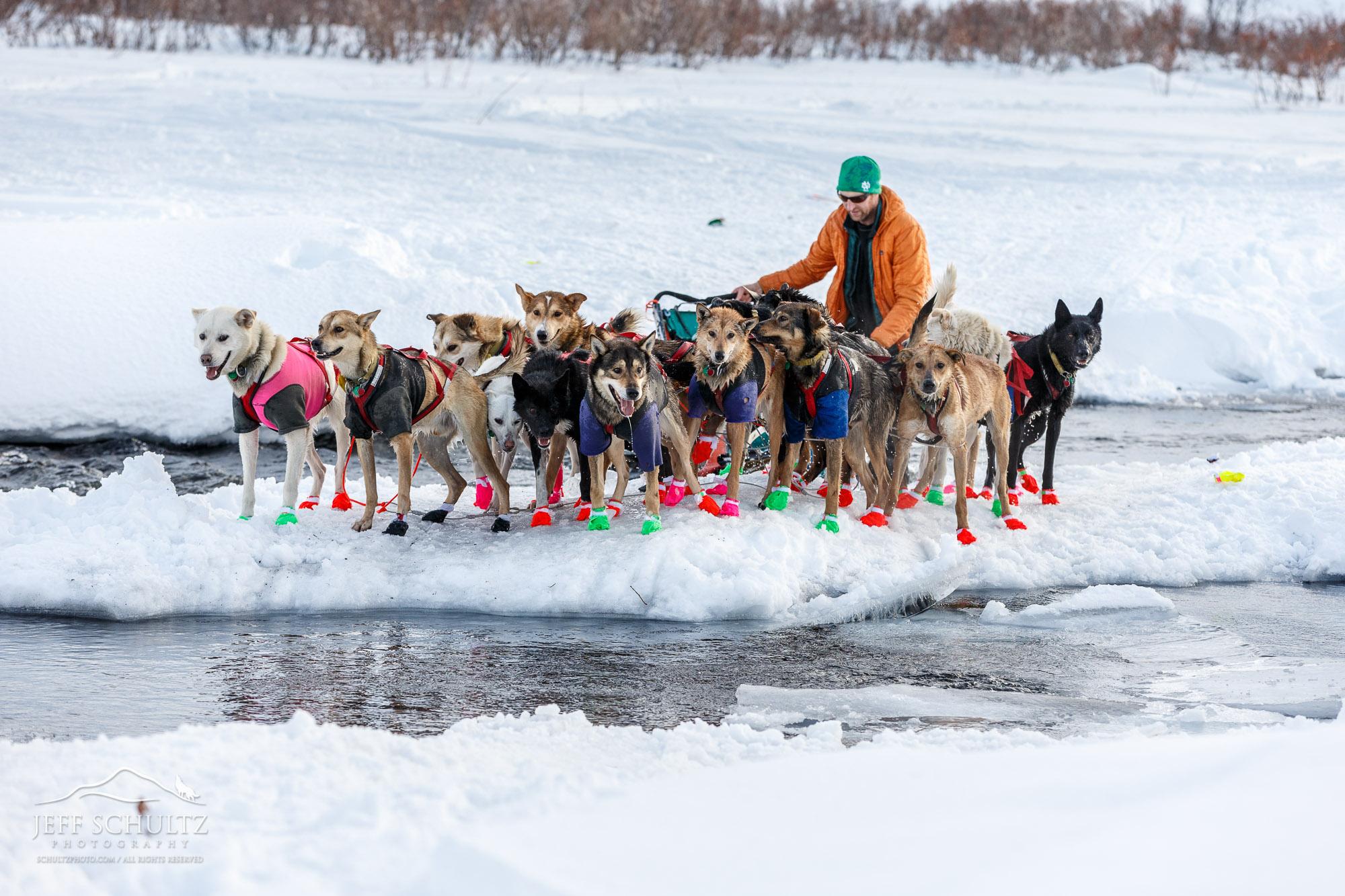 Iditarod - Jeff Schultz Photography