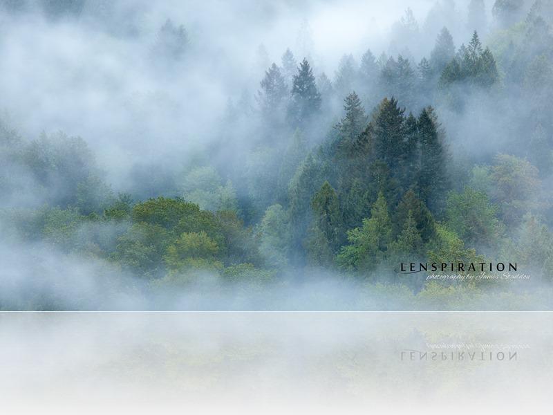 7217_JAS_Jonsrud-Overlook-Oregon-USA-W_thumb