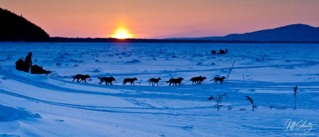 Image made on the Yukon River at Ruby during the 2010 Iditarod with a Canon 1DX-Mark II and a Canon 24-105mm lens at 70mm 1/500th second at f/7.1 ISO 800