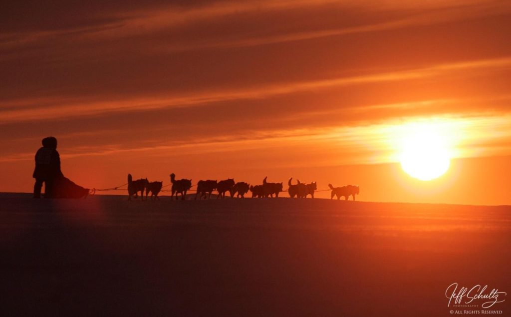 Image made during the 2008 Iditarod with a Canon 1DX-Mark II and a Canon 100-400mm f/4.5-5.6 lens at 250mm 1/2000th second at f/6.3 ISO 400