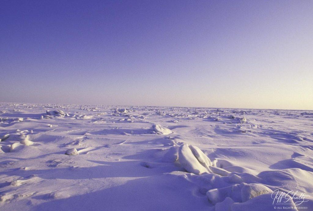 Pressure ridges on the Norton Sound sea ice.